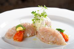 Tuna fish tartare Stock Images