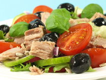 Tuna fish with tomatoes and black olives Stock Images