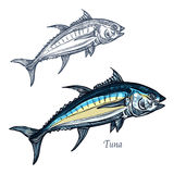 Tuna fish vector isolated sketch icon Royalty Free Stock Photos
