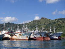 Tuna Fleet in Port. Distant waters tuna fleet at anchor in Port Louis, Mauritius on a beautiful April day Stock Photo