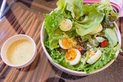 Tuna and fresh vegetable salad with boiled egg Royalty Free Stock Image
