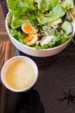 Tuna and fresh vegetable salad with boiled egg Stock Images