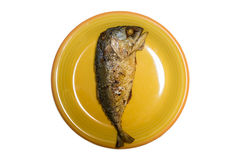 Tuna fried isolated Stock Photography