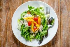 Tuna green salad Stock Image
