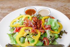 Tuna green salad Stock Images