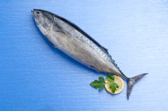 Tuna with lemon Royalty Free Stock Photography