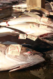 Tuna Market. In Traditional market Stall Fish Stock Images