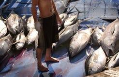 Tuna Market in Mindanao royalty-vrije stock afbeelding