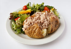 Tuna mayo Jacket Potato with side salad Stock Photography