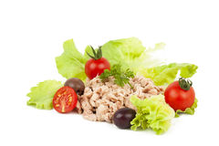 Tuna meal Royalty Free Stock Images