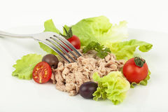 Tuna meal Royalty Free Stock Photo