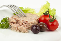 Tuna meal Royalty Free Stock Image