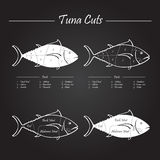 Tuna meat cuts scheme. Set of meat cuts diagram in vector style - white on blackboard Royalty Free Stock Images
