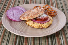 Tuna Melt. Sandwich with onion slices and pretzels Royalty Free Stock Photo