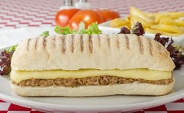 Tuna Melt. Cheese and tuna toasted panini served with salad and chips on a red and white gingham background Stock Photography