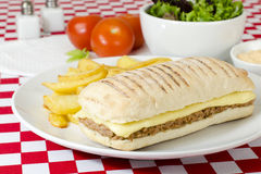 Tuna Melt. Cheese and tuna toasted panini served with salad and chips on a red and white gingham background Royalty Free Stock Images