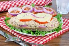 Tuna Melt on Italian Bread. Hot tuna melt on Italian Bread with Vidalia Onions, Tomatoes and Melted Cheese Stock Photography