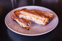 Tuna Melt Sandwich. Freshly made grilled tuna melt sandwich with cheddar cheese and whole wheat bread royalty free stock images