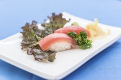 Tuna nigiri with ginger and wasabi on blue background stock image
