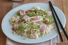 Tuna with noodles Royalty Free Stock Photography