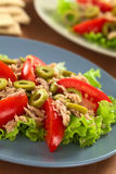Tuna, Olive and Tomato Salad Royalty Free Stock Photo