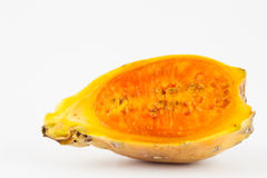Tuna Opuntia ficus-indica Royalty Free Stock Photography