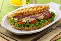 Tuna Panini Sandwich Lizenzfreie Stockfotografie