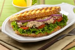 Tuna Panini Sandwich Royalty Free Stock Photography