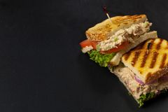 Tuna Panini Sandwich Stock Images