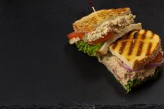 Tuna Panini Sandwich. Grilled Tuna Panini Sandwich. Selective focus Stock Images