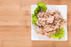 Tuna with parsley Royalty Free Stock Images
