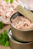 Tuna with parsley Stock Image