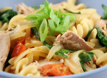 Tuna Pasta Royalty Free Stock Images