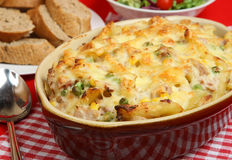 Tuna Pasta Bake Stock Photos