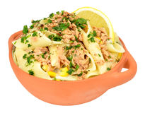 Tuna And Pasta Meal Image stock