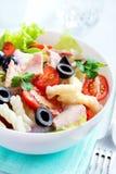 Tuna and pasta salad Royalty Free Stock Photo