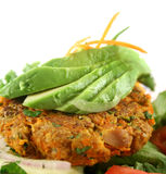 Tuna Pattie With Avocado Royalty Free Stock Image