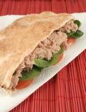 Tuna pita. Tuna with spinach and tomato in a whole wheat pita stock photography