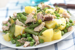 Tuna and potato salad Stock Image