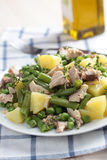Tuna and potato salad Royalty Free Stock Photos