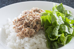 Tuna on Rice with Spinach Royalty Free Stock Photography