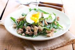 Tuna and rocket salad Stock Photography