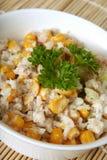 Tuna;s salad Royalty Free Stock Images