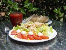 Tuna salad. Fresh tuna salad on a restaurant table royalty free stock photos