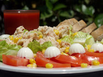 Tuna salad. Fresh tuna salad whit a glass of tomato juice and wholemeal bread Royalty Free Stock Photos
