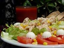 Tuna salad. Fresh tuna salad close up stock photos