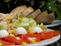 Tuna salad. Fresh tuna salad whit wholemeal salad stock images