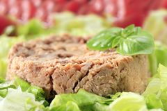 Tuna Salad. Selective focus on the front Royalty Free Stock Image