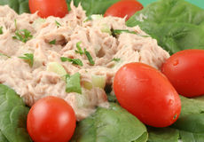 Tuna salad royalty free stock photos