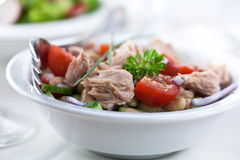 Free Tuna Salad Royalty Free Stock Photography - 15173007